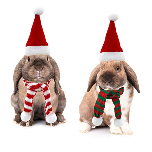 Vehomy Small Animal Christmas Costume - Christmas Guinea Pig Hat and Scarf for Hamster Guinea Pig Chinchilla Hedgehog Lizard Bearded Dragon and Other Similar Small Pet L