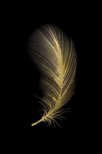 Queence | Acrylglasbild mit Blattgold | Wandbild Glasbild Acrylbild Rahmenlos | Feder | Druck auf Acrylglas | Goldveredelung | Größe: 40x60 cm