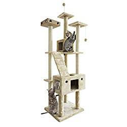 Best Cat Tree for Cornish Rex Cat