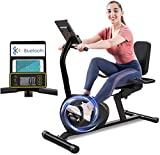 Tricodale Recumbent Exercise Bike for Adults Seniors, Magnetic Recumbent Bike with Bluetooth, Stationary Bike with 8-Level Mute Resistance, Pulse Sensors, LCD Monitor, 380lbs Weight Capacity