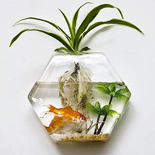 HO-TBO Pflanze Terrarium, Hänge-Hexagon-Blumen-Anlage Glasvase Hausgarten Hochzeit Dekoration löschen Gewächshäuser Gartenarbeit (Color : Clear, Size : One Size)