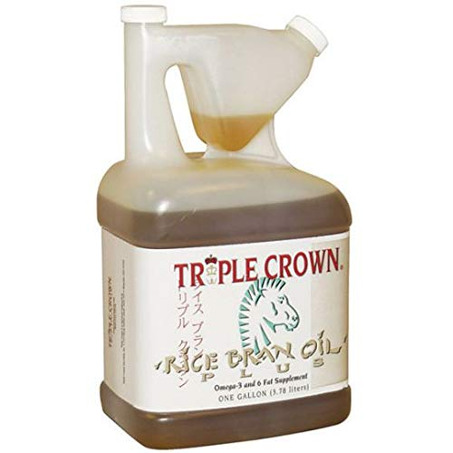 Rice Bran Oil With Flaxseed For Horses