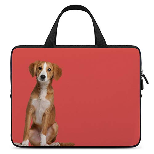 Universal Laptop Computer Tablet,Case,Cover for Apple/MacBook/HP/Acer/Asus/Dell/Lenovo/Samsung,Laptop Sleeve,Color for Companion Dog English Foxhound Beagle-Harrier,12inch