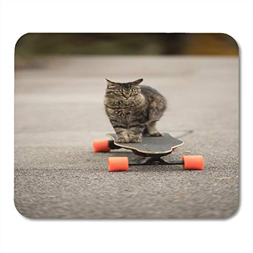 Muis Pads Coon Grijs Silly Cat op Elektrische Skateboard Board Maine Mouse Pad voor notebooks, Desktop Computers matten