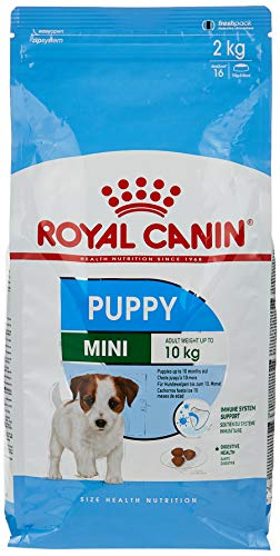 Royal Canin - Royal Canin Mini Puppy Contenido: 2 kg 🔥