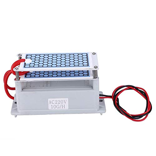 Generador de ozono, generador de ozono integrado Limpiador de placas de cerámica para el hogar Purificador de olores Generador de ozono 10g para secadoras, lavavajillas, refrigeradores(220V)