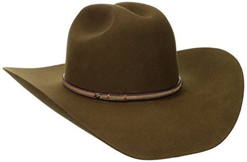 Stetson Men's Powder River 4X Buffalo Felt Cowboy Hat (7 1/4, Mink)