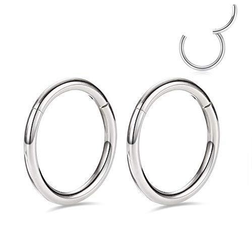 20g Cartilage Earring Rook Earrings Daith Earrings 6mm Tragus Earrings Anti-Tragus Earring Silver Nose Ring Hoop Nose Rings 20 Gauge Tiny Ring Hoop