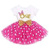 FYMNSI Vestido de manga corta para bebé, niña, de algodón, tutú de tul, línea A, vestido de princesa, vestido de fiesta para sesión de fotos., Rose One (vestido solo), 12 meses