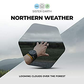 Northern Weather: Looming Clouds Over the Forest