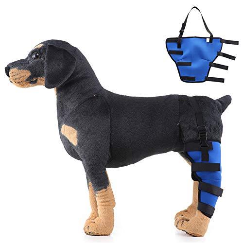 WESDOO Bandage Hund Kniebandage Hund Hundebeinstütze Gelenkpflege für Hunde Hundegelenkstütze Hundebeinverband Schmerzlinderung für Hunde biue,Left-Leg-m
