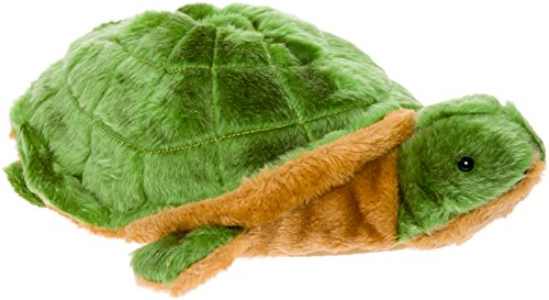 1. Turtle Slippers