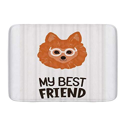CONICIXI Non Slip Bath Mat Bathroom Rug,Childish Cute Pomeranian Dog in Glasses and My Best Friend,Fluffy Thick Microfiber Cozy Bath Carpet for Bathtub,Shower and Bath Room,Soft Floor Mats