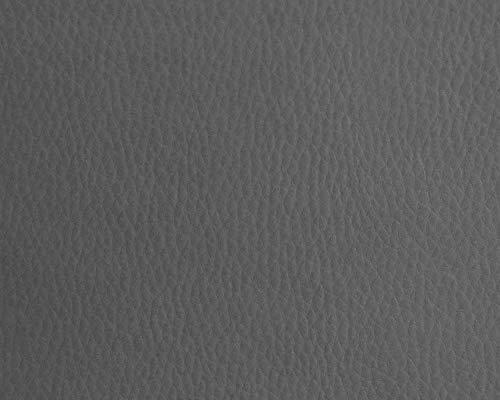 Polipiel para tapizar, realizar manualidades decorar, muebles, cojines, coches, sillas, sofás, bolsos. Tela Ecopiel. Cuero Sintético. 140 cm de ancho (100 cm, Grey Nature)