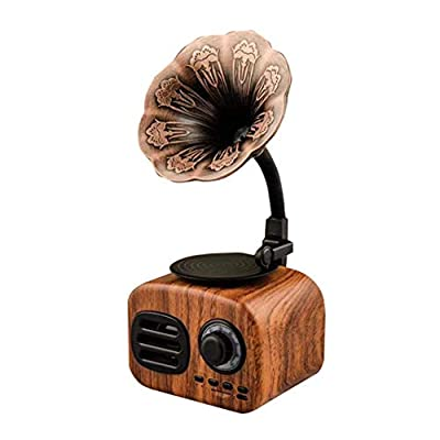 YWT Portable Wireless Bluetooth Speakers Palm Size, with FM Radio Gramophone Retro Design, Built-in Rechargeable Battery, TF Card Slot, for Home Office by YWT