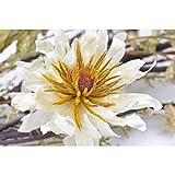Artipistilos Bouquet De Fleurs Artificielles Lyon - Blanc - Fleurs En Tissu