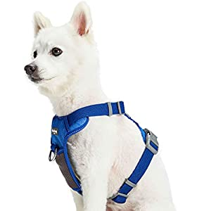 Blueberry Pet 10+ Colors Reflective Padded Dog Harnesses