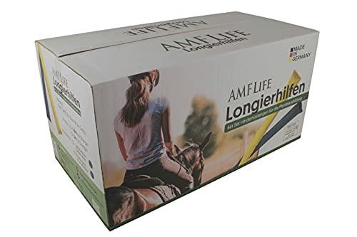 Longier-Hilfe für Pferde, blau & gelb, 4 Stk., 2,8m lang, Pferdeausbildung, Richtläufer, Bodenarbeitshindernis, Hindernis-Stangen - 2