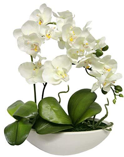 Flair Flower Kunstblume Schmetterling Orchidee in Schale Künstliche Blume Kunstorchidee Phalaenopsis mit Übertopf Kunstpflanze Hochzeit Deko, weiß, 27 cm