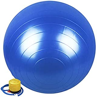 65CM GYM Exercise Swiss Fitness Pregnancy Birthing Injury Sciatica Yoga Ball Blue