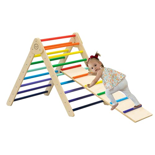 wild design studio Pikler Climbing Triangle with Ramp & Slide - Foldable Wooden Montessori Kids 2 in 1 Triangle Ladder, Indoor Playground, Suitable & Safe for Toddlers in a Choice of Colors (Rainbow)