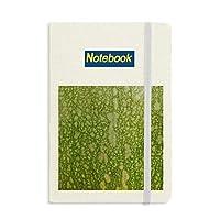 緑のカボチャの皮のマクロ写真のパターン ノートブッククラシックジャーナル日記A 5