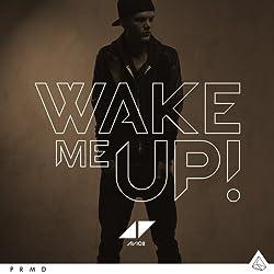 Avicii-Wake ME UP-2TR [Import]
