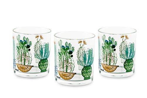 Excelsa Cactus - Juego de 3 vasos de cristal