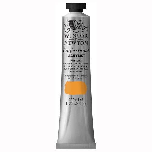 Winsor & Newton Professional - Pintura acrílica, tubo 200 ml, color tierra de siena natural