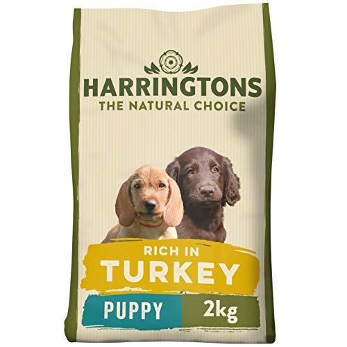 HARRINGTONS Harrington's Lachs und Kartoffel eignet Sich als Alleinfutter, 8000 g