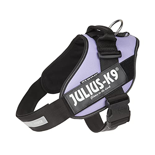 Julius-K9 IDC Powerharness for Dogs with Two Free Custom Patches, Purple, Size 2