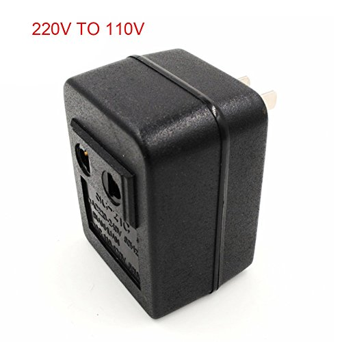 ccsfrgtrh AC 220V a 110V / 110V a 220V Regulador del Transformador del Viaje del Adaptador del convertidor de Voltaje de Corriente alterna 20W