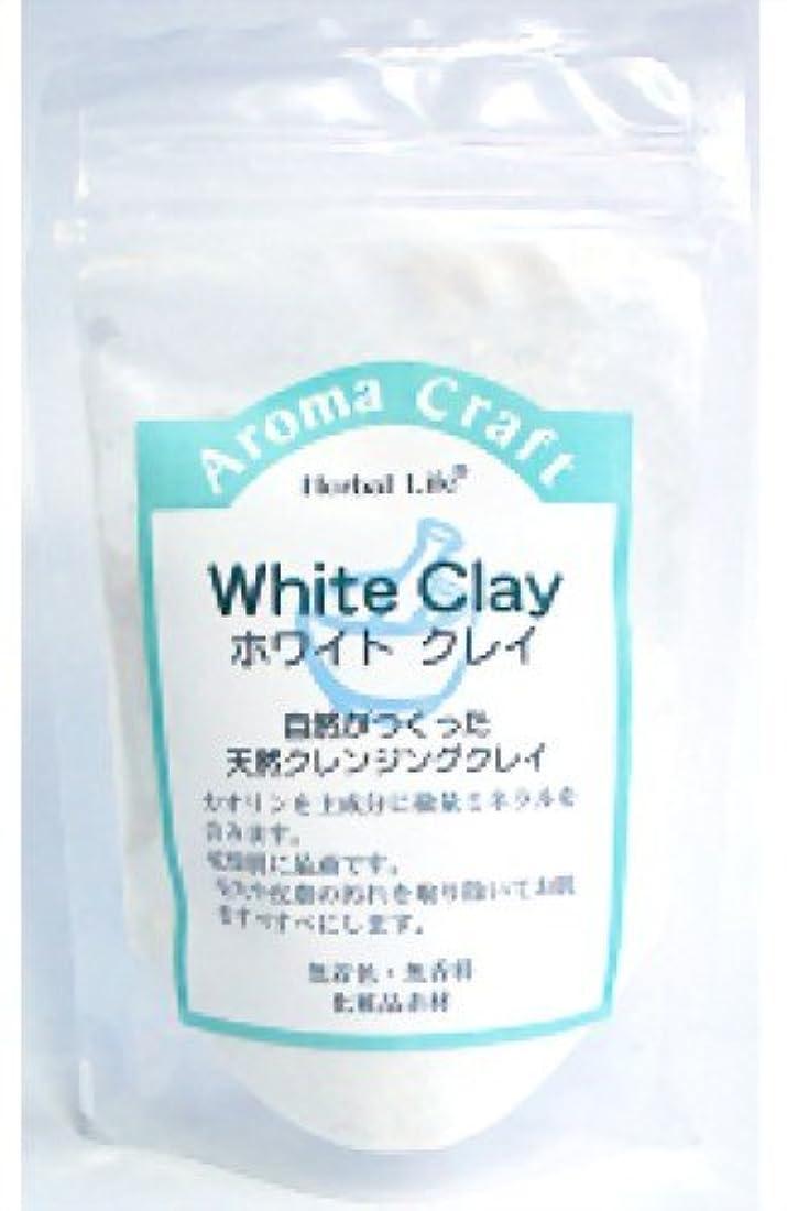 額保持予防接種生活の木 AC ホワイトクレイ 30g