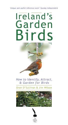 Ireland's Garden Birds – How to Attract, Identify and Garden for Birds: How to Identify, Attract, & Garden for Birds (English Edition)