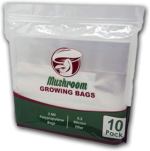 """The Magnificent Bee All in One Mushroom Grow Bags (10 Count) 