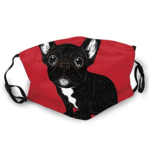 Harots Fashion Unisex Cloth Mask Washable and Reusable Cute Brindle Frenchie Puppy Face Protect Cover Balaclava Headbands for Adult Outdoors Sports