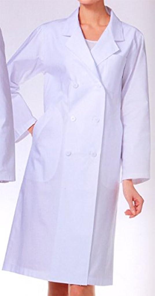 間欠塩ピンポイントカゼン 125-20 レディス診察衣W型 長袖 (看護師 ドクター 介護)