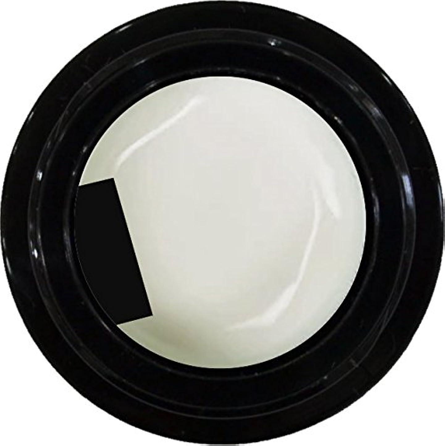 ジャンクうぬぼれたハウジングカラージェル enchant color gel M003 FrenchWhite 3g/ マットカラージェル M003 フレンチホワイト 3グラム