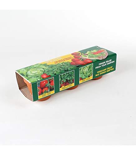 Astuceo Kit de 3 Pots en Terre Cuite pour semis salades et tomates