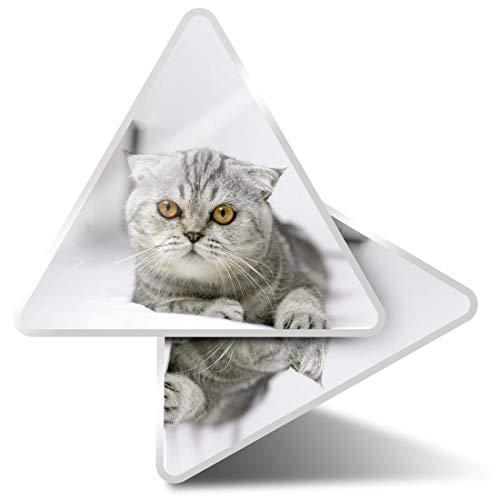 2 pegatinas triangulares de 10 cm, diseño de gato escocesa plegable gatito pegatinas divertidas para ordenadores portátiles, tabletas, equipaje, reserva de chatarra, nevera #3644