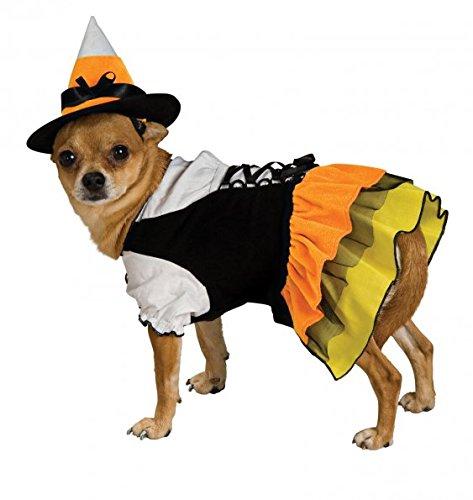 Disfraces de bruja para mascotas. Perros, gatos...