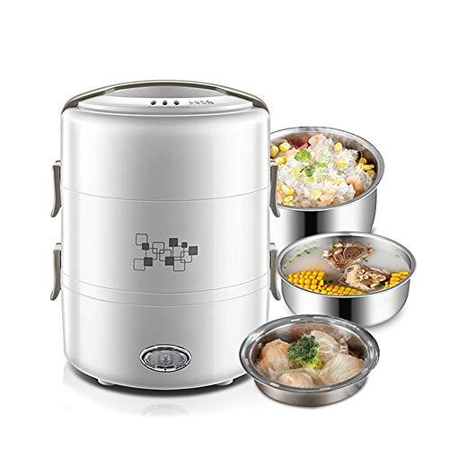 DAMAI Scaldavivande Portavivande Elettrico Lunch Box Portatile Acciaio Inox per Campeggio Casa Ufficio,2L