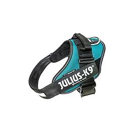 Julius-K9, 16IDC-PG-1, IDC Powerharness, dog harness, Size: L/1, Petrol Green