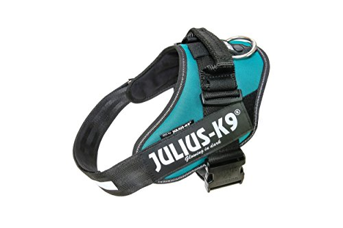 Julius-K9 16IDC - Power Harness