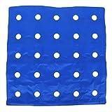 Alvinlite Cojín Inflable para Asiento, cómodo cojín para Silla Cojín para Silla de Ruedas Adecuado para sillas de Ruedas Uso de Oficina en casa Azul