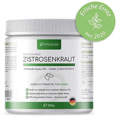 PRIVANA Zistrosenkraut (Cistus Incanus) - 250g - 100% rein natürlich und ohne Zusatzstoffe - Made in Germany - für Hunde & Katzen