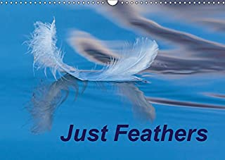 Just Feathers 2019: Magically coloured feathers from around the world (Calvendo Nature)