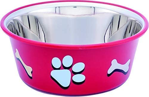 Elton Paw & Bone Cutie Bowls (Red) Dog Bowls Export Quality Inside Stainless Steel Dog Food Bowl Feeder Bowls Pet Bow...