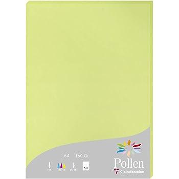 Clairefontaine Pollen Etui de 25 Feuilles 21 x 29,7 cm 210 g Vert Menthe