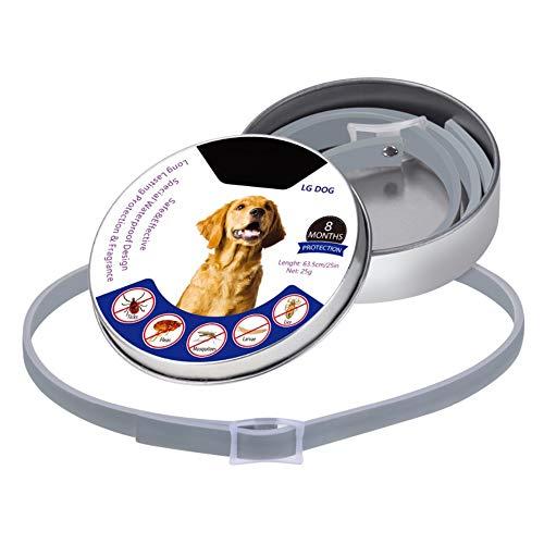 YAMER Pet Dog Natural Natural Oli Collar Easy Buckle Design Disinfestazioni Antiparassitari Prevenzione Trattamento per Cani di Taglia Piccola di Media Taglia, 8 Mesi di Protezione